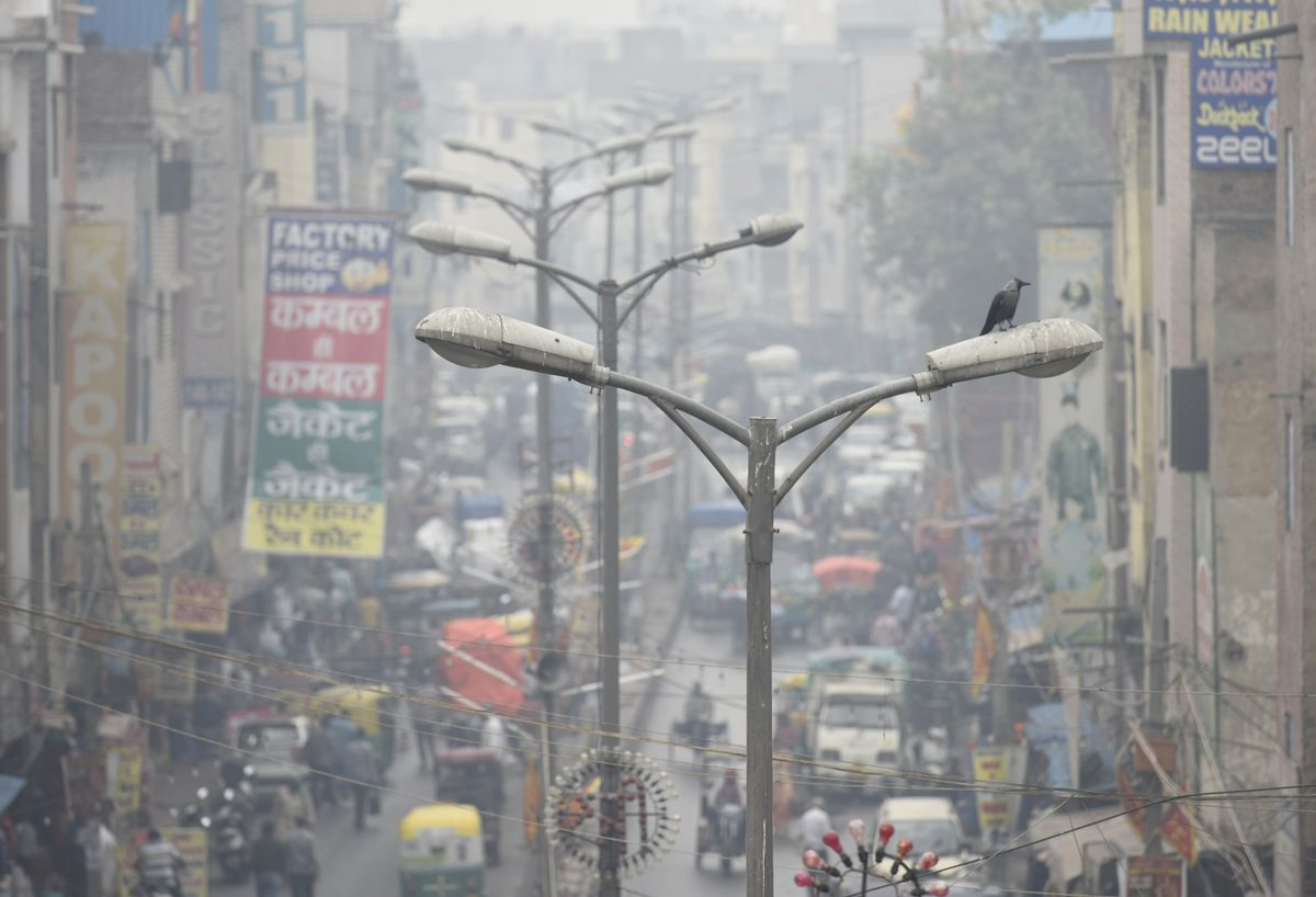 A bird sits on a street light amid heavy smog near Tis Hazari Court, on November 7, 2019 in New Delhi, India.