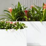 Quick Guide for Choosing Your Planter Pots
